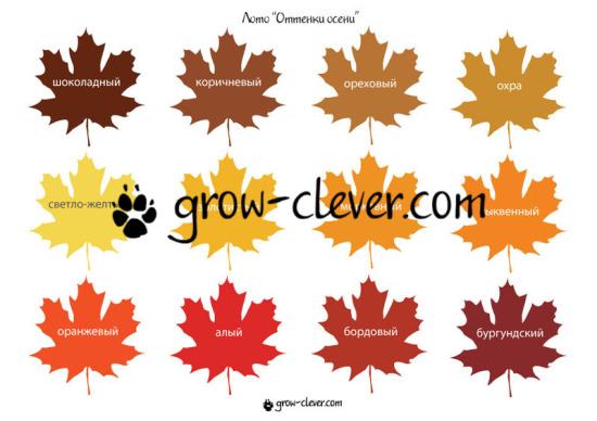 Раскраска дерево осеннее. Раскраски для детей на тему осень