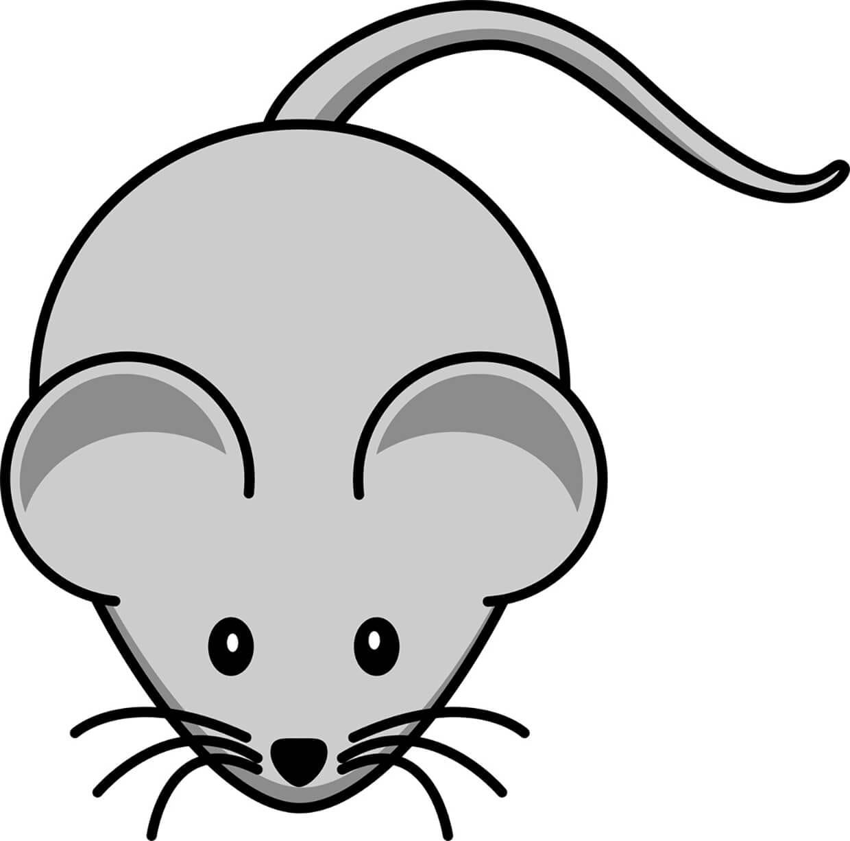 Мышка нарисованная картинка для детей