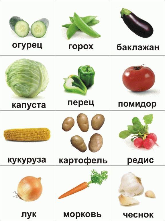 Огурец картинки для детей детского сада. Овощи картинки ...