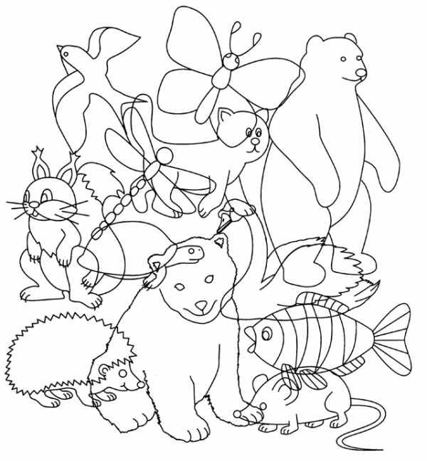 Перепутанные картинки животных для детей